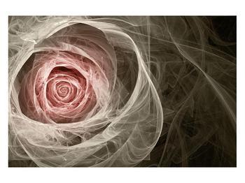 Abstraktní obraz růže (K014988K12080)