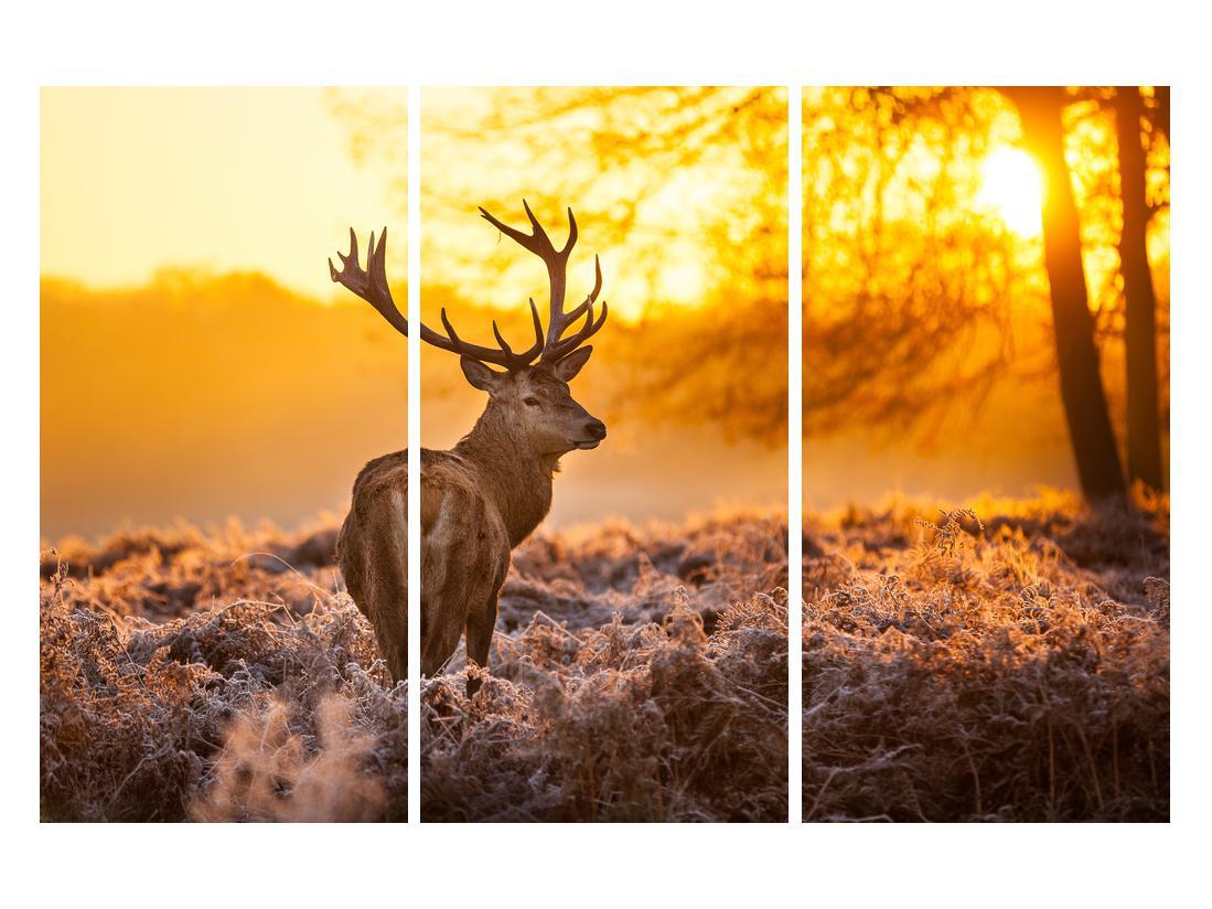 Slika jelena (K011281K120803PCS)