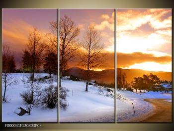 Obraz zimní krajiny (F000031F120803PCS)
