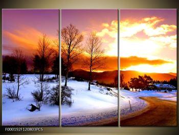 Obraz zimní krajiny (F000192F120803PCS)