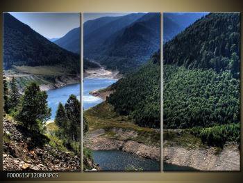Obraz řeky a hor (F000615F120803PCS)