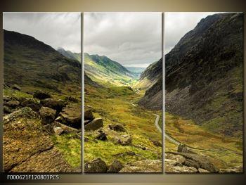 Obraz cesty uprostřed hor (F000621F120803PCS)