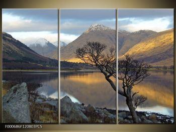 Obraz hor u jezera (F000686F120803PCS)