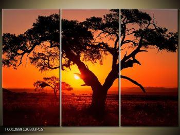 Obraz ohnivého západu slunce (F001288F120803PCS)