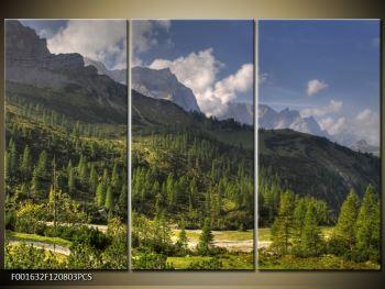 Krásný obraz hor (F001632F120803PCS)