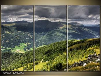 Obraz horského údolí (F001635F120803PCS)