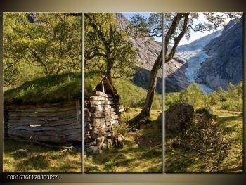 Obraz horské chatrče (F001636F120803PCS)