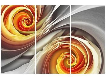 Abstraktní obraz - spirál (F001693F120803PCS)