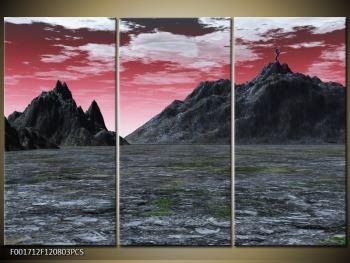 Obraz skalnaté přírody (F001712F120803PCS)
