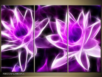 Moderní obraz květin (F001725F120803PCS)