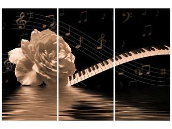 Černobílý obraz růže a klavíru (F001875F120803PCS)