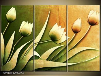 Obraz kreslených květin (F004118F120803PCS)