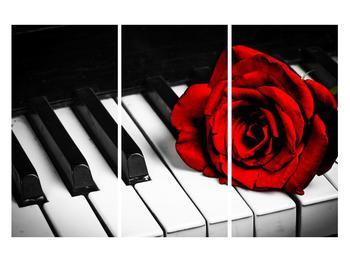 Zongora és egy rózsa képe (K011229K120803PCS)