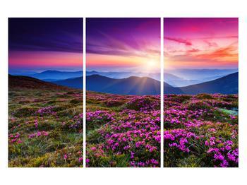 Tablou cu peisaj montan înflorit (K011322K120803PCS)