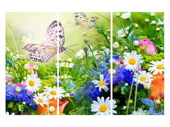 Obraz letných kvetov s motýľom (K012220K120803PCS)