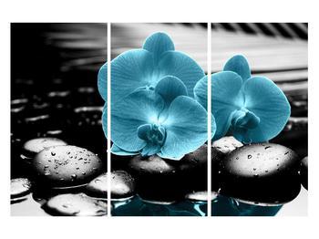Tablou cu flori de orhidee albastre (K012398K120803PCS)