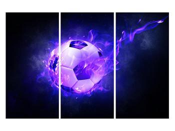 Tablou cu mingea de footbal în plasă (K014164K120803PCS)