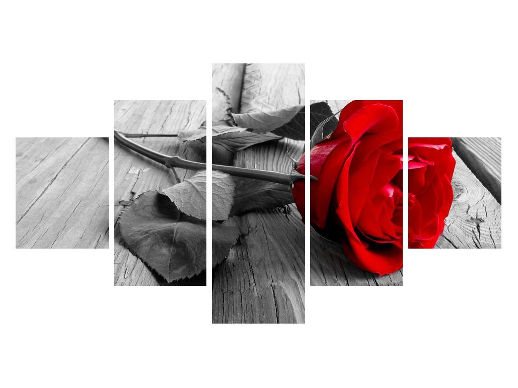 Obraz rudé růže (K011138K12570)