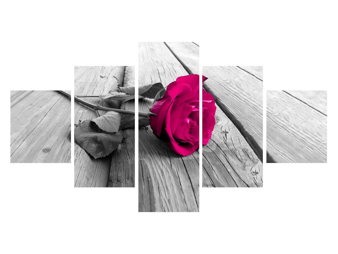 Obraz růže (K011856K12570)