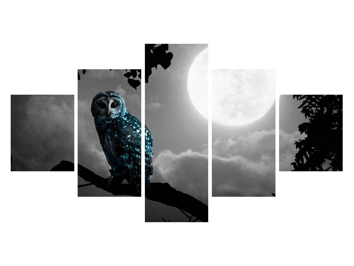 Tablou cu bufnița nocturnă (K012185K12570)