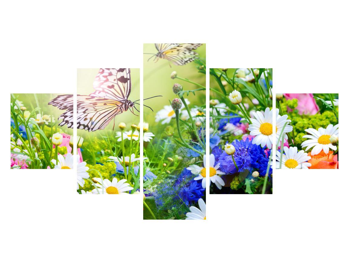 Slika poletnih cvetov z metuljem (K012220K12570)
