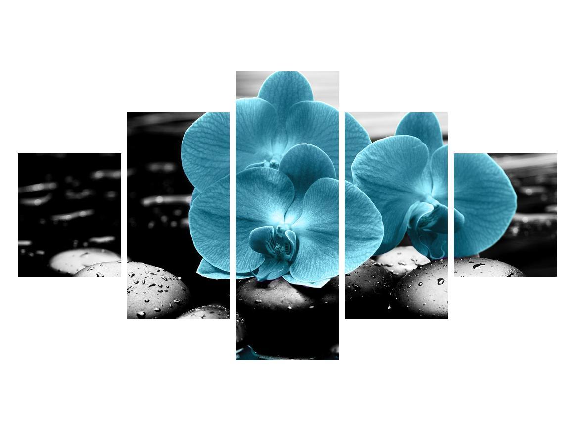 Tablou cu flori de orhidee albastre (K012398K12570)