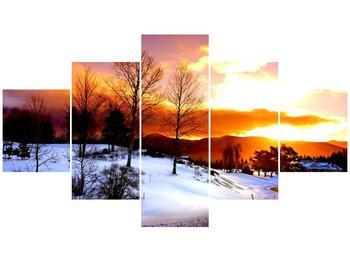 Obraz zimní krajiny (F000192F12570)