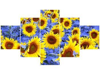 Obraz slunečnic (F000619F12570)