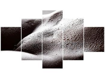 Obraz oroseného těla (F001169F12570)