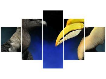 Obraz ptačích zobáku (F001358F12570)