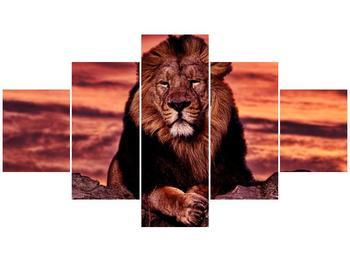 Obraz krále zvířat (F001507F12570)