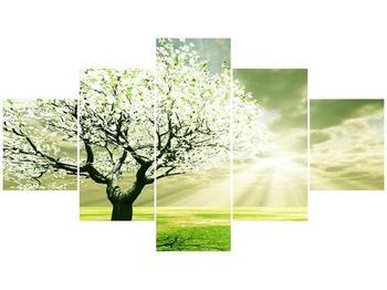 Obraz stromu na jaře (F002291F12570)