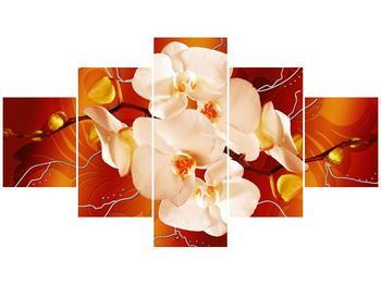 Obraz bílých orchidejí (F005694F12570)