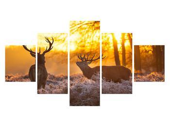 Obraz jelenů (K011267K12570)