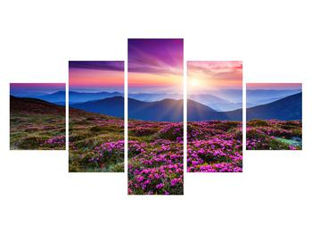 Obraz horské rozkvetlé krajiny (K011322K12570)