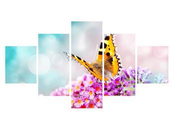 Obraz motýla na květech (K012351K12570)