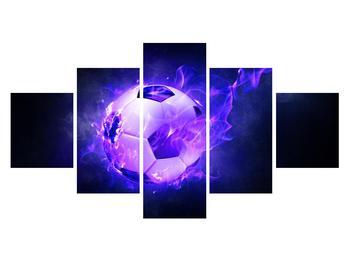 Tablou cu mingea de footbal în plasă (K014164K12570)