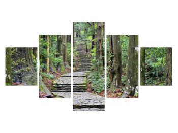 Obraz kamenných schodů v lese (K014268K12570)