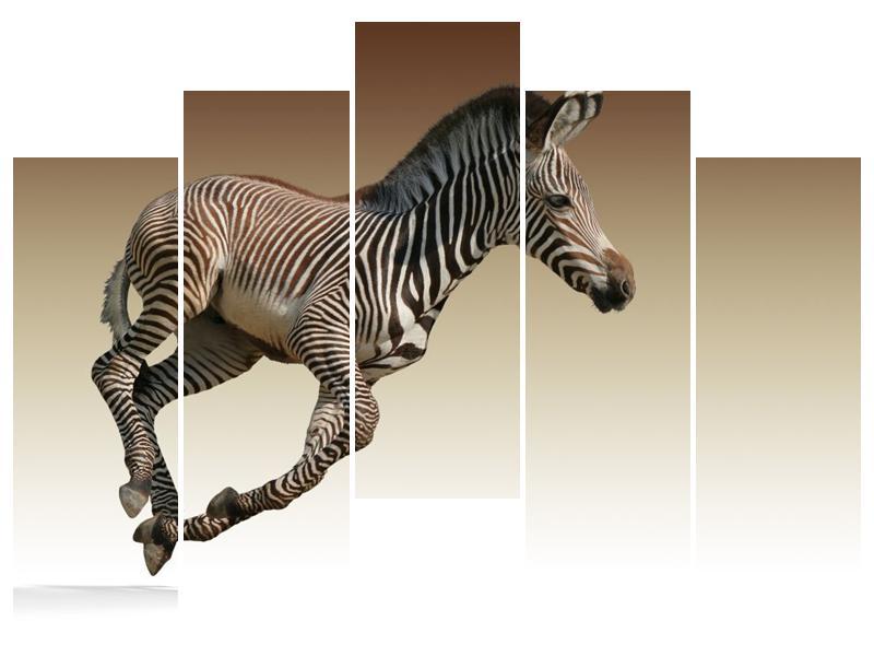 Obraz běžící zebry (F002416F12590)