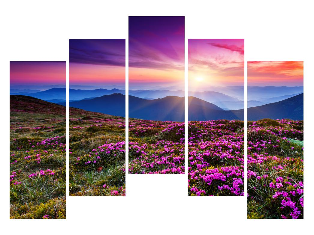 Slika planinskog rascvijetalog krajolika (K011322K12590)