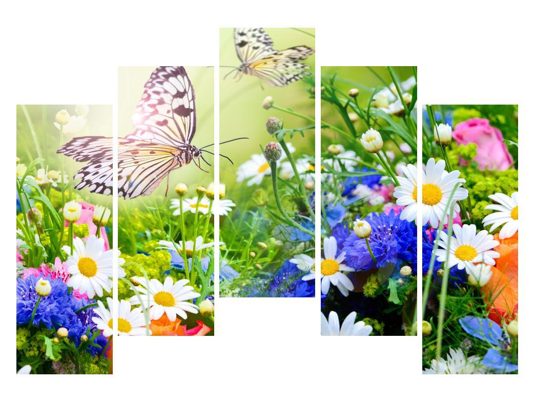 Slika poletnih cvetov z metuljem (K012220K12590)