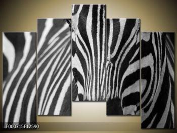 Obraz černobílého detailu zebry (F000715F12590)