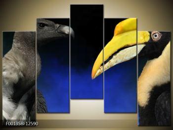 Obraz ptačích zobáku (F001358F12590)