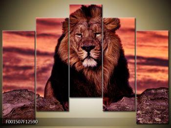 Obraz krále zvířat (F001507F12590)