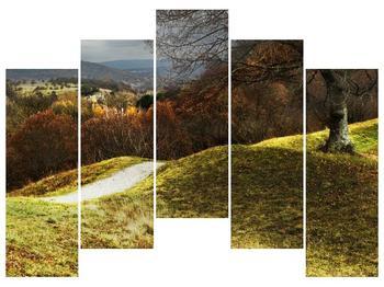 Obraz podzimního pahorku (F001650F12590)