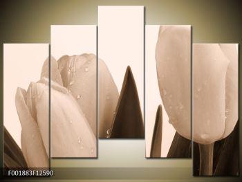 Krásný obraz tulipánů (F001883F12590)