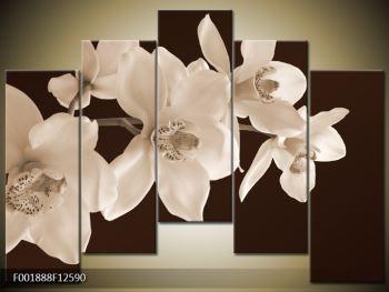 Krásný obraz bílých květin (F001888F12590)