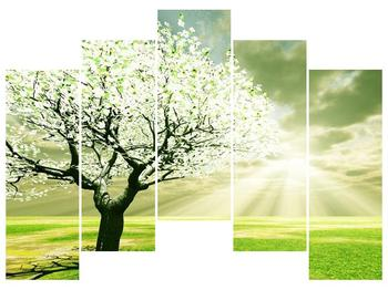 Obraz stromu na jaře (F002291F12590)