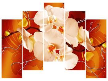 Obraz bílých orchidejí (F005694F12590)