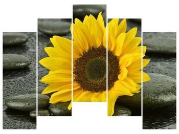 Moderní obraz F005794F12590 (F005794F12590)